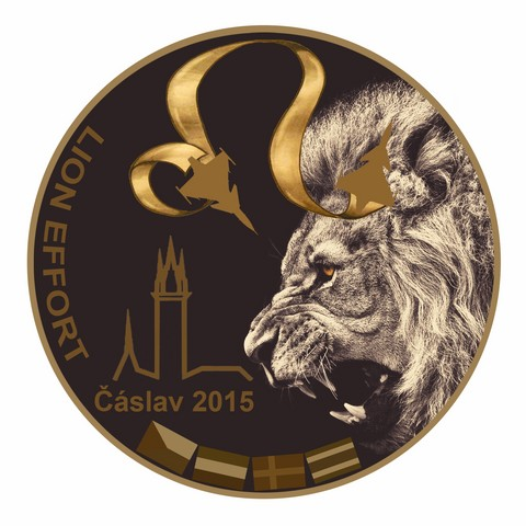 Lion Effort 2015